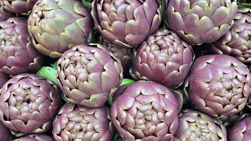 L'ingrediente del mese di febbraio: il carciofo