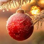 ricette bimby per Natale
