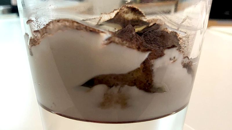 Bicchierini di tiramisù crema di ricotta di bufala