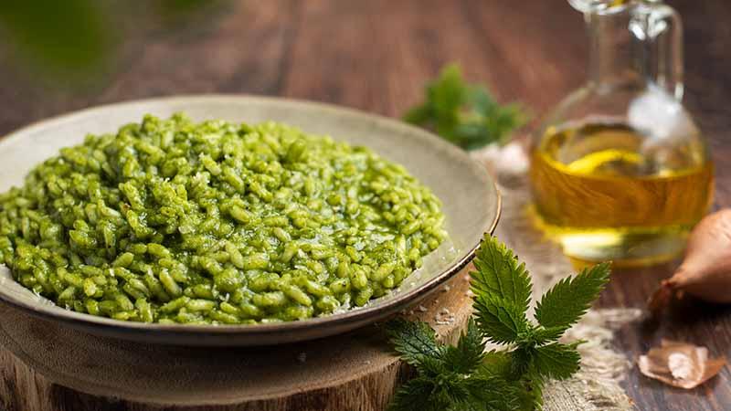 Risotto all ortica ricette bimby for Cucinare ortica