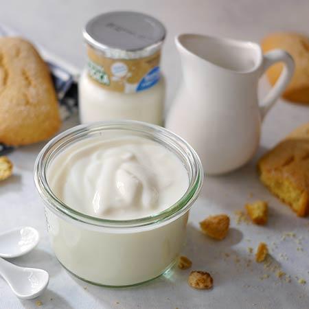 Yogurt denso fatto in casa