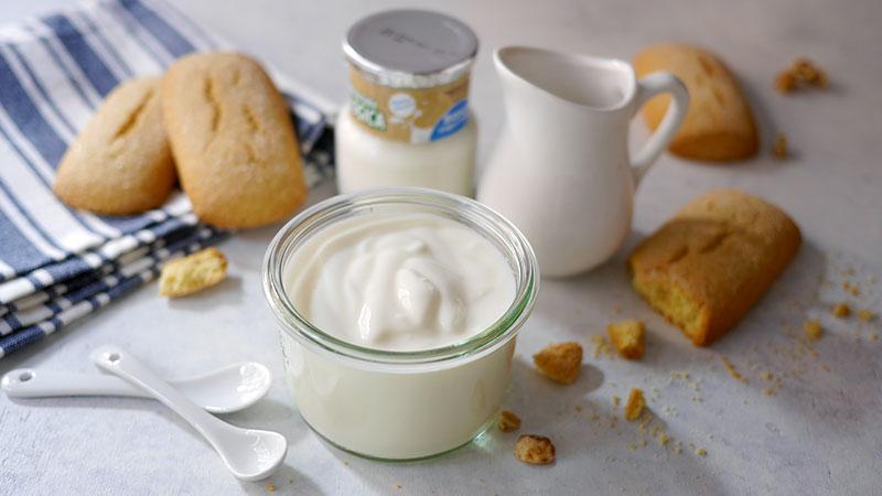 Ricetta yogurt con bimby tm31